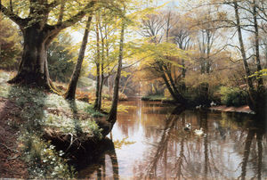 Peder Mork Monsted - Flodlandskab