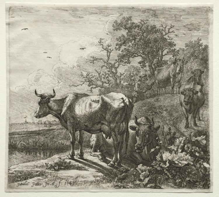 牽牛 バイ Paulus Potter (1625-1654, Netherlands)
