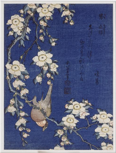 Bullfinch and weeping cherry blossoms, 1834 バイ Katsushika Hokusai (1760-1849, Japan)