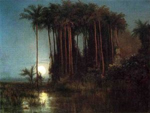 Louis Remy Mignot - 月光 over a Marsh インチ Ecuador