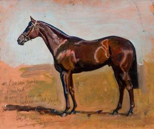 Alfred James Munnings - の研究 氏 Lambton's 馬 , 'pricket'