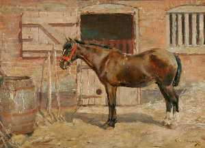 Alfred James Munnings - の研究 a ポニー