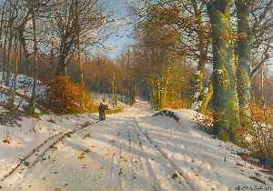 Peder Mork Monsted - 冬景色